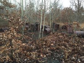 Some of the abandoned drums at the site